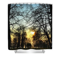 Trees And Sun In A Foggy Day Shower Curtain