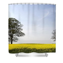 Trees In A Rapeseed Field, Yorkshire Shower Curtain by John Short
