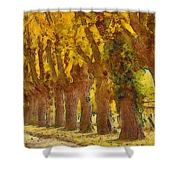 Trees In Fall - Brown And Golden Shower Curtain by Matthias Hauser