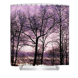 Shower Curtain featuring the photograph Trees In Glorious Calm by Pamela Hyde Wilson