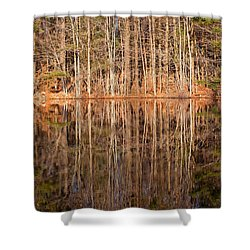 Trees In The Comfort Of Trees Shower Curtain by Karol Livote