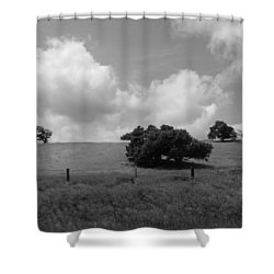 Shower Curtain featuring the photograph Trees On The Hillrise by Kathleen Grace