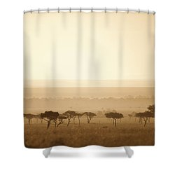 Trees On The Savannah At Sunset Masai Shower Curtain by David DuChemin