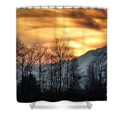 Trees With Orange Sky Shower Curtain