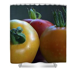 Shower Curtain featuring the photograph Tres Amigos by Joe Schofield