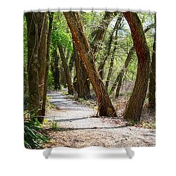Shower Curtain featuring the photograph Trestle Walk by Kathryn Meyer