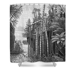 Triassic Period Shower Curtain by Science Source