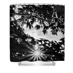 Triple Bluff Shower Curtain by Nathan Larson