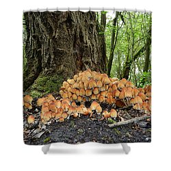 Trooping Crumblecaps Shower Curtain