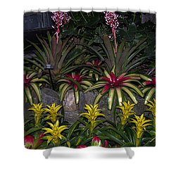 Tropical 1 Shower Curtain by Wanda J King