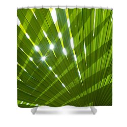 Tropical Palm Leaf Shower Curtain by Amanda Elwell