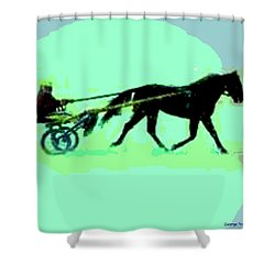Shower Curtain featuring the photograph Trotter by George Pedro