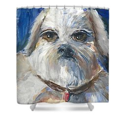Shower Curtain featuring the painting Trouble by Bernadette Krupa