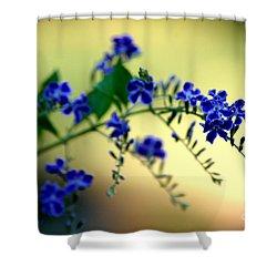 Tru Blu Shower Curtain