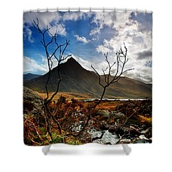 Shower Curtain featuring the photograph Tryfan And Tree by Beverly Cash