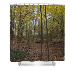 Shower Curtain featuring the photograph Tryon Park by William Norton