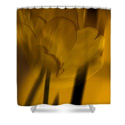 Shower Curtain featuring the photograph Tulip Abstract by Ed Gleichman