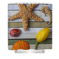 Tulip And Starfish Shower Curtain by Garry Gay