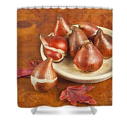 Tulip Bulbs Brocade Shower Curtain by Verena Matthew