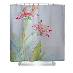 Tulip Duo I  Shower Curtain by Debbie Portwood