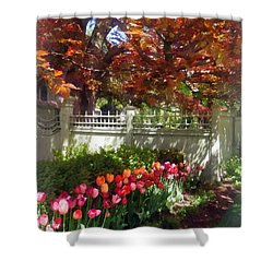 Tulips By Dappled Fence Shower Curtain by Susan Savad