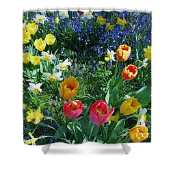 Tulips Dancing Shower Curtain by Rory Sagner