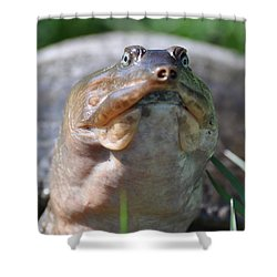 Shower Curtain featuring the painting Turtle With An Attitude by AnnaJo Vahle