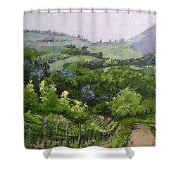 Tuscan Vinyard Painting Shower Curtain
