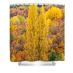 Shower Curtain featuring the photograph Tuscany Landscape  by Luciano Mortula