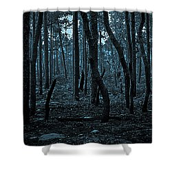 Shower Curtain featuring the photograph Twilight In The Smouldering Forest by DigiArt Diaries by Vicky B Fuller