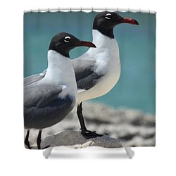 Shower Curtain featuring the photograph Twins by Patrick Witz