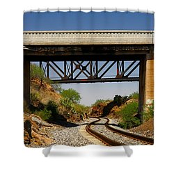 Two Bridges And A Cut Shower Curtain