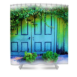 Two Doors Shower Curtain by Judi Bagwell