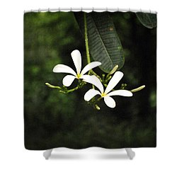 Two Flowers Shower Curtain by Sumit Mehndiratta