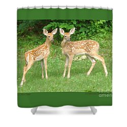 Two Little Deer Shower Curtain