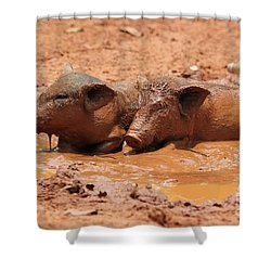 Two Pigs In A Puddle Shower Curtain by Nola Lee Kelsey