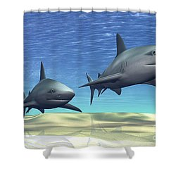 Two Sharks On Patrol Over A Sandy Reef Shower Curtain by Corey Ford