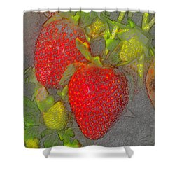 Two Strawberries Shower Curtain by David Lee Thompson