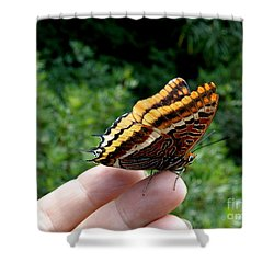Two Tailed Pasha Shower Curtain by Lainie Wrightson