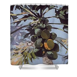 Shower Curtain featuring the painting Under Papaya Tree by Andrew Drozdowicz