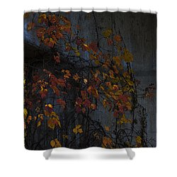 Under The Overpass Shower Curtain by Ron Jones