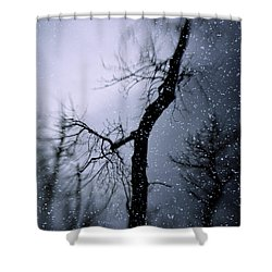 Under The Snow Shower Curtain