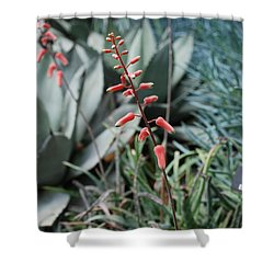 Shower Curtain featuring the photograph Unique Flower by Jennifer Ancker