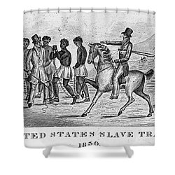 United States Slave Trade Shower Curtain by Photo Researchers