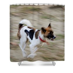 Shower Curtain featuring the photograph Unleashed by Fotosas Photography
