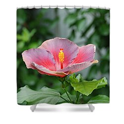 Shower Curtain featuring the photograph Unusual Flower by Jennifer Ancker