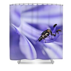 Unusual Fly On Agapantha Stamen Shower Curtain by Kaye Menner