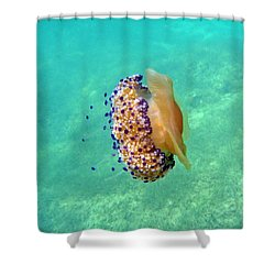 Unwelcome Jellyfish Shower Curtain by Rod Johnson