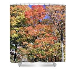 Upj Campus Autumn  Shower Curtain