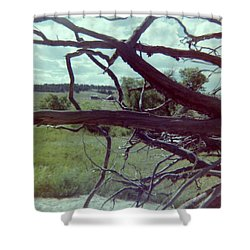Shower Curtain featuring the photograph Uprooted by Bonfire Photography